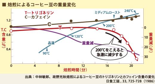 焙煎によるコーヒー豆の重量変化