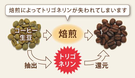 コーヒー生豆からトリゴネリンを抽出・還元