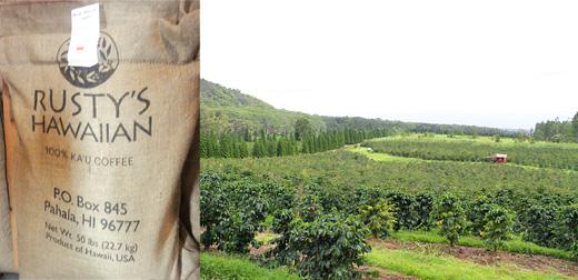 ハワイ ハワイ島 カウ地区・ラスティーズハワイアン農園