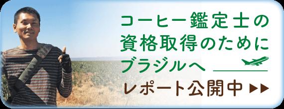 ブラジルコーヒー鑑定士【クラシフィカドール】資格取得レポート