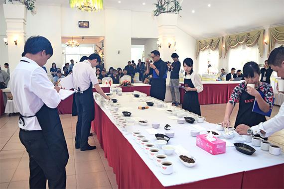 ベトナム国内コンテスト入賞ロットコーヒー
