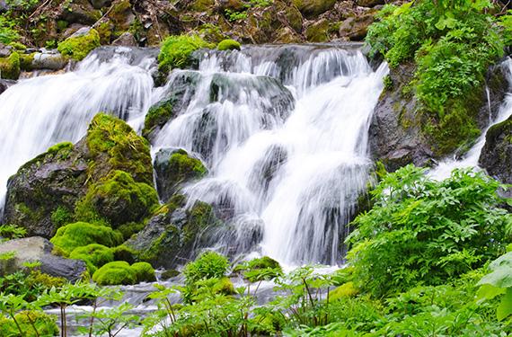 北海道羊蹄山 環境省名水百選「羊蹄のふきだし湧水」