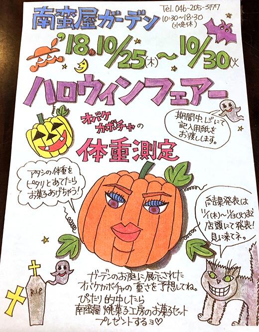 おばけかぼちゃの体重測定