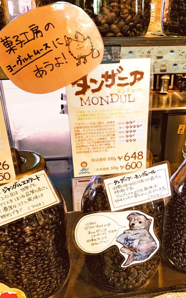 ワンフェス☆オススメコーヒー豆は【わんザニア(タンザニア)】