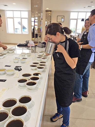 新種のコーヒーをカッピング