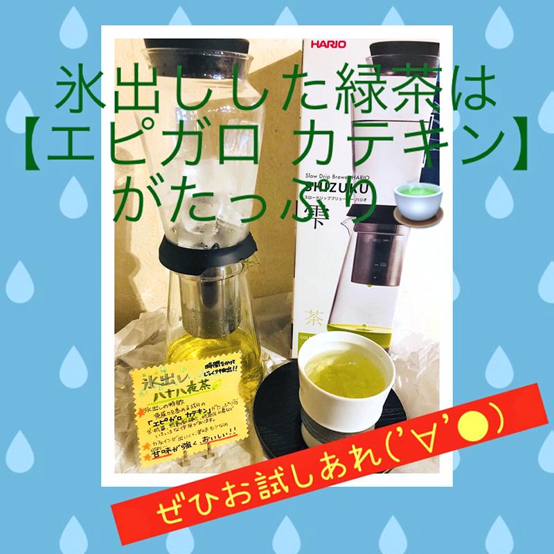 スーパーカテキン『エピガロ カテキン』たっぷりの氷水抽出の緑茶