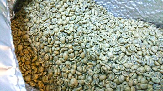 2014エル・サルバドルCOE入賞ロット:エル・マハウラル農園生豆。