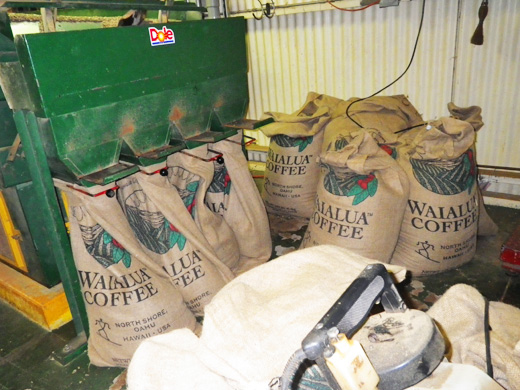 ドールのコーヒー生産